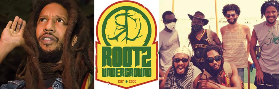 rootzi-site